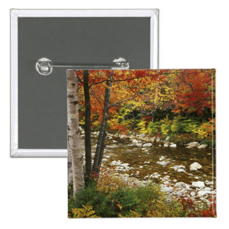 N A USA New Hampshire White Mountains Pinback Buttons