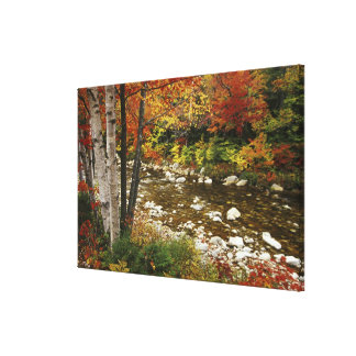 N.A., USA, New Hampshire, White Mountains, Stretched Canvas Print