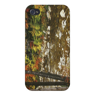N.A., USA, New Hampshire, White Mountains, Case For The iPhone 4