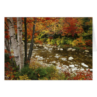 N.A., USA, New Hampshire, White Mountains, Greeting Card