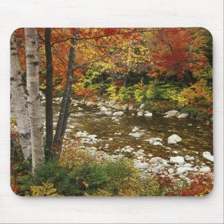 N A USA New Hampshire White Mountains Mousepad
