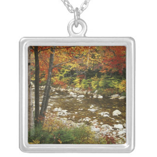 N.A., USA, New Hampshire, White Mountains, Square Pendant Necklace