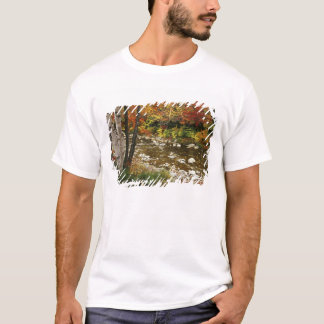 N.A., USA, New Hampshire, White Mountains, T-Shirt