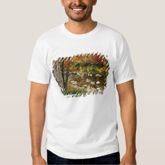 N.A., USA, New Hampshire, White Mountains, Tshirt