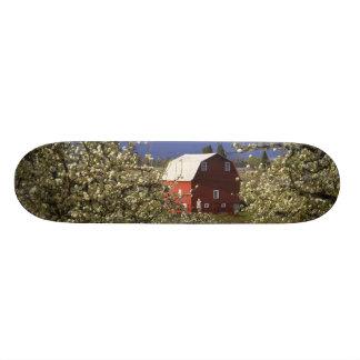 N.A., USA, Oregon, Hood River County. Red 18.1 Cm Old School Skateboard Deck