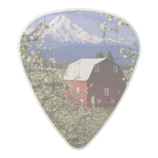 N.A., USA, Oregon, Hood River County. Red Acetal Guitar Pick