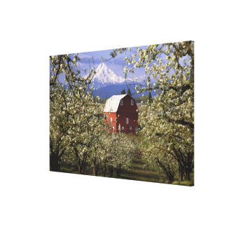 N.A., USA, Oregon, Hood River County. Red Canvas Print