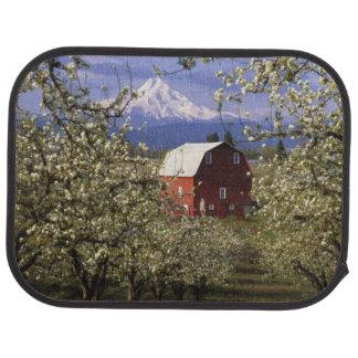 N.A., USA, Oregon, Hood River County. Red Car Mat