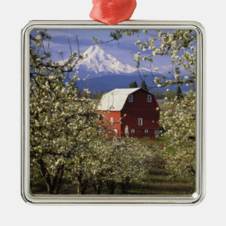 N.A., USA, Oregon, Hood River County. Red Christmas Ornament