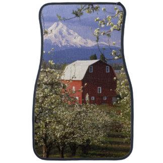 N.A., USA, Oregon, Hood River County. Red Floor Mat