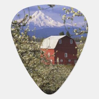 N.A., USA, Oregon, Hood River County. Red Guitar Pick