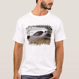 N.A., USA, South Carolina, Charleston.  Magnolia T-Shirt