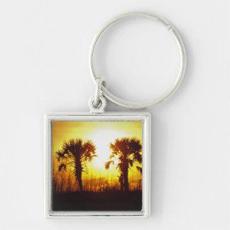 N.A., USA, South Carolina, Charleston. Sunset Key Ring