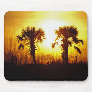 N.A., USA, South Carolina, Charleston. Sunset Mouse Mat