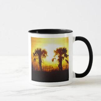N.A., USA, South Carolina, Charleston. Sunset Mug