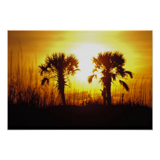 N.A., USA, South Carolina, Charleston. Sunset Poster