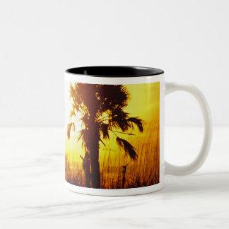 N.A., USA, South Carolina, Charleston. Sunset Two-Tone Coffee Mug