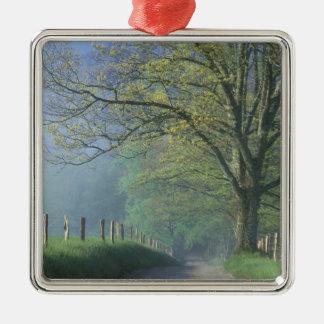 N.A., USA, Tennessee, Smokey Mts. National Park, Christmas Ornament