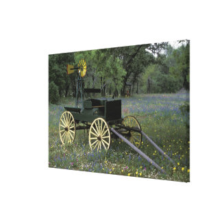 N.A., USA, Texas, Devine, Old wagon and Canvas Print