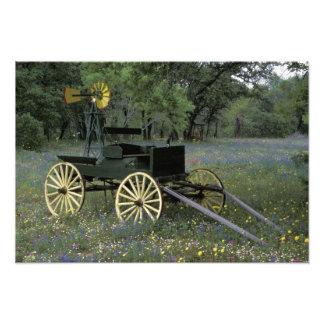 N.A., USA, Texas, Devine, Old wagon and Photo Art
