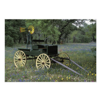 N.A., USA, Texas, Devine, Old wagon and Photographic Print