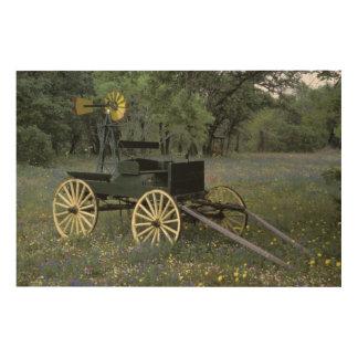 N.A., USA, Texas, Devine, Old wagon Wood Print