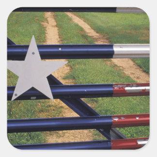 N.A., USA, Texas, Lake Buchanan, Texas flag Sticker