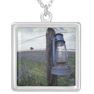 N.A., USA, Texas, Llano, Blue Lantern, Oak tree Silver Plated Necklace