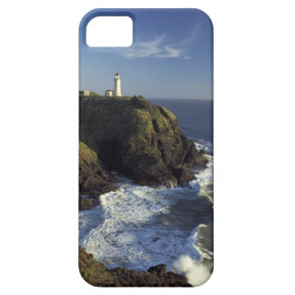 N.A., USA, Washington, Cape Disappointment State iPhone 5 Case