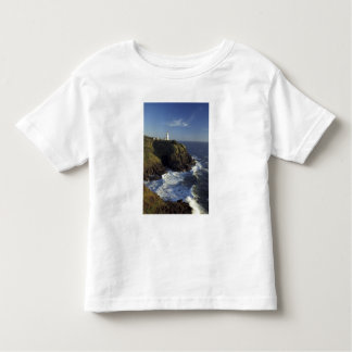 N.A., USA, Washington, Cape Disappointment State Toddler T-Shirt