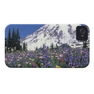N.A., USA, Washington Mt. Rainier and iPhone 4 Case