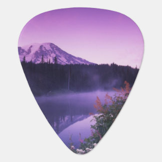 N.A., USA, Washington, Mt. Rainier National Plectrum