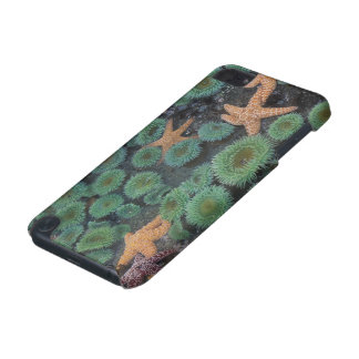 N.A., USA, Washington, Olympic National Park, 2 iPod Touch (5th Generation) Cover