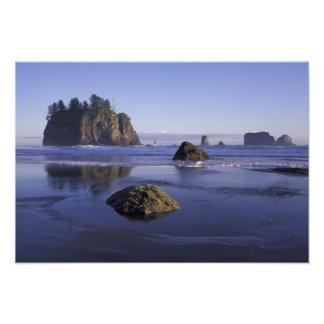 N A USA Washington Olympic National Park 2 Photo