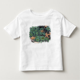 N.A., USA, Washington, Olympic National Park, 2 Toddler T-Shirt