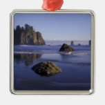 N.A., USA, Washington, Olympic National Park, 3 Silver-Colored Square Decoration