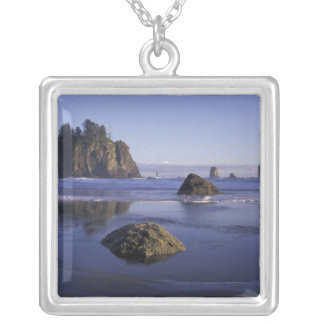 N.A., USA, Washington, Olympic National Park, 3 Silver Plated Necklace