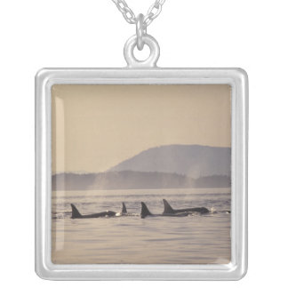 N.A., USA, Washington, San Juan Islands Orca Silver Plated Necklace