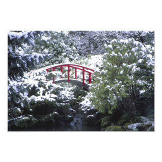 N.A., USA, Washington, Seattle. Moon bridge in Photograph