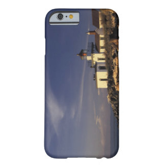 N.A., USA, Washington, Seattle Westpoint Barely There iPhone 6 Case