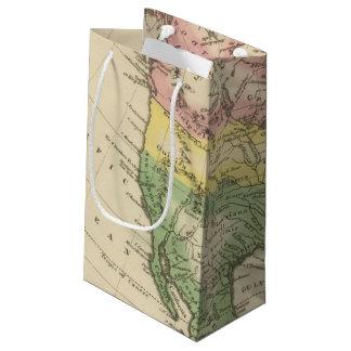 N America 2 Small Gift Bag