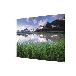 NA, Canada, Alberta, Tonquin Valley. Jasper Stretched Canvas Print