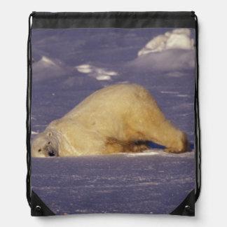 NA, Canada, Manitoba, Churchill, Polar bear Drawstring Bag
