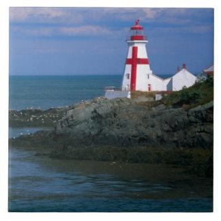 NA, Canada, New Brunswick, Campobello Island. 4 Large Square Tile