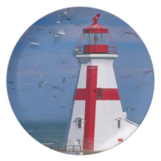 NA, Canada, New Brunswick, Campobello Island. 8 Plate