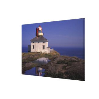NA, Canada, Newfoundland, Cape Spear. Old Cape Stretched Canvas Print