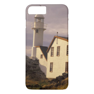 NA, Canada, Newfoundland, Lobster Cove. Lobster iPhone 8 Plus/7 Plus Case