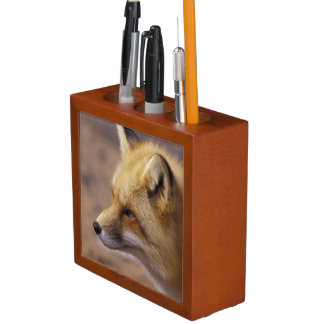 NA, Canada. Red Fox Desk Organiser