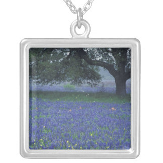 NA, Texas, Devine, Oak and blue bonnets Silver Plated Necklace