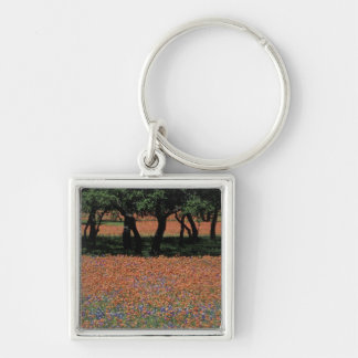 NA, Texas, Texas Hill Country, Buchan Dam, Silver-Colored Square Key Ring
